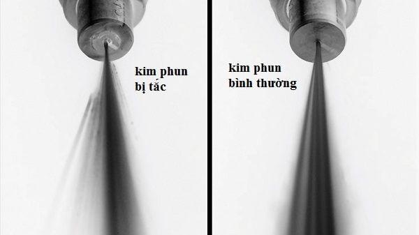 kim-phun-bi-tac